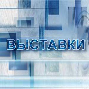 Выставки Катунков
